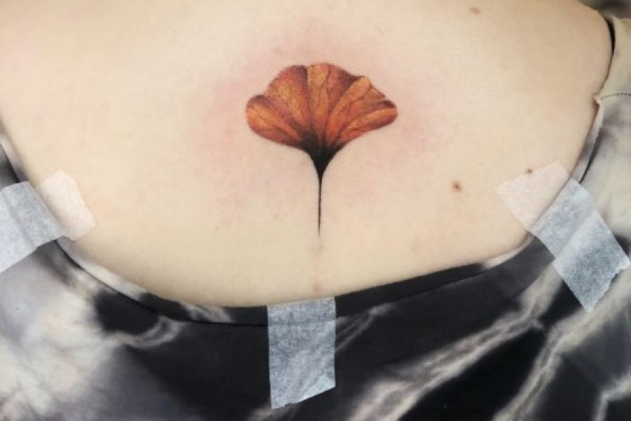 ginkgo_leaf_back_maikoonly