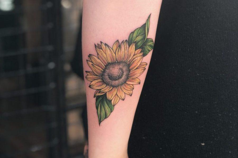 maikoonly_sunflower_calf