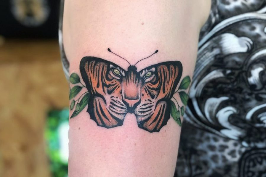 tiger_butterfly_maikoonly